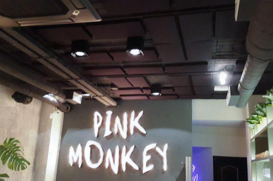 isinac-ponteareas-basotec-pink-monkey-2