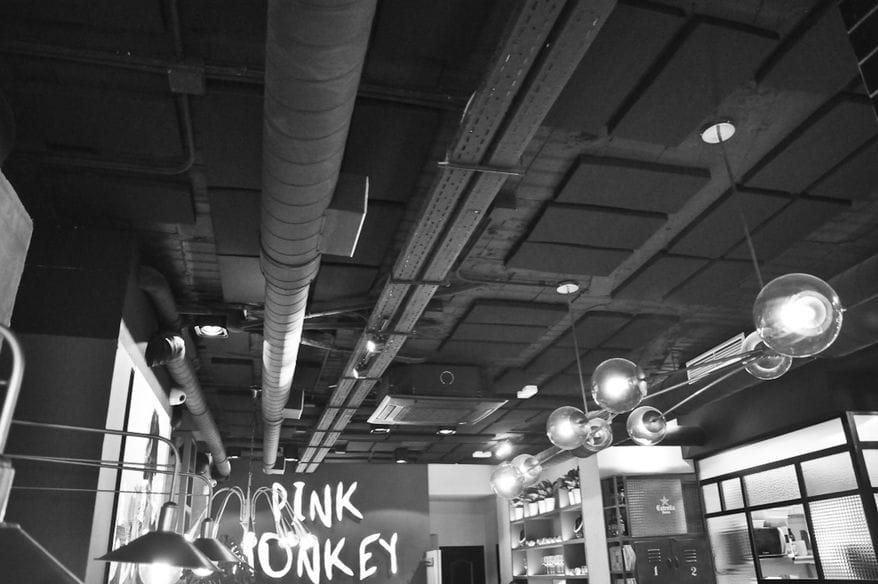 isinac-ponteareas-basotec-pink-monkey-6